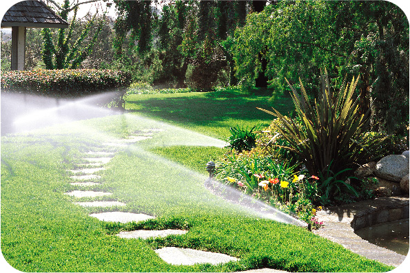 Een beregeningsplan houdt je tuin het hele jaar in uitstekende conditie.